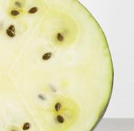 white watermenlon
