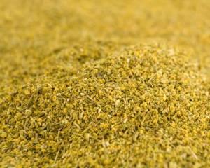 fennel-pollen